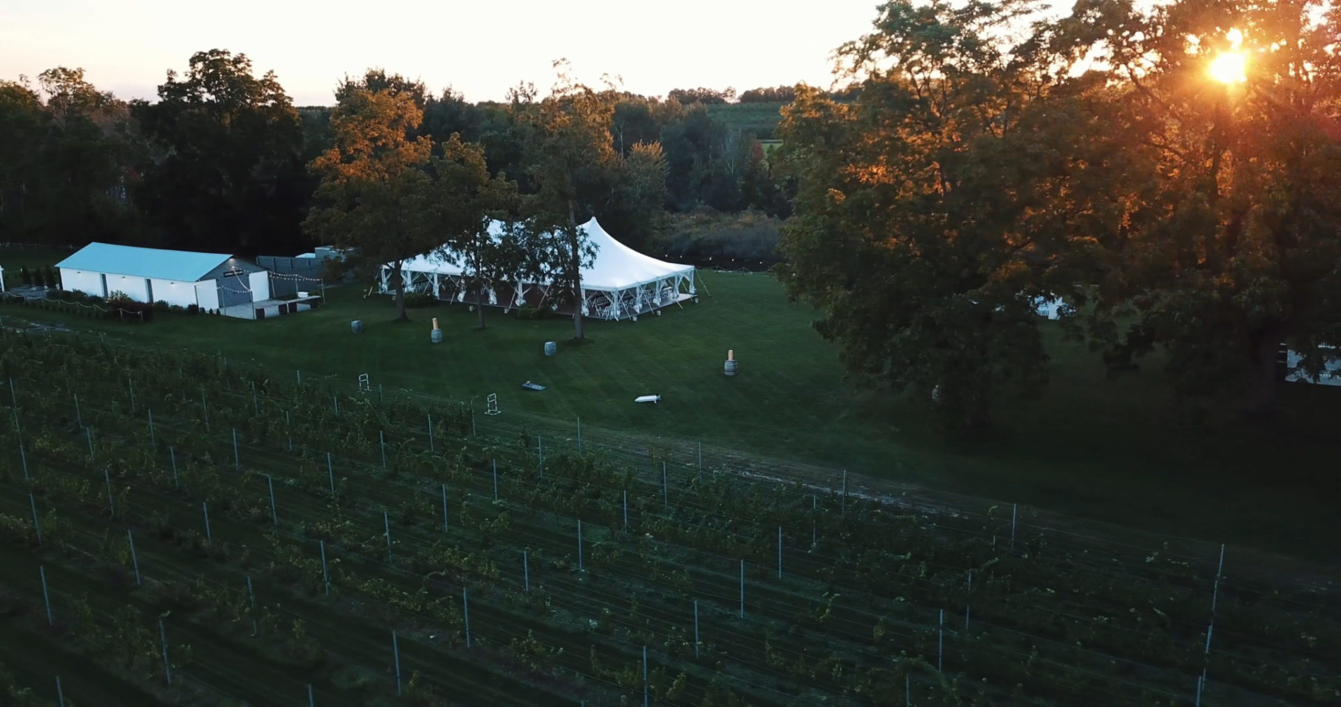 sun setting over the vineyard wedding venue