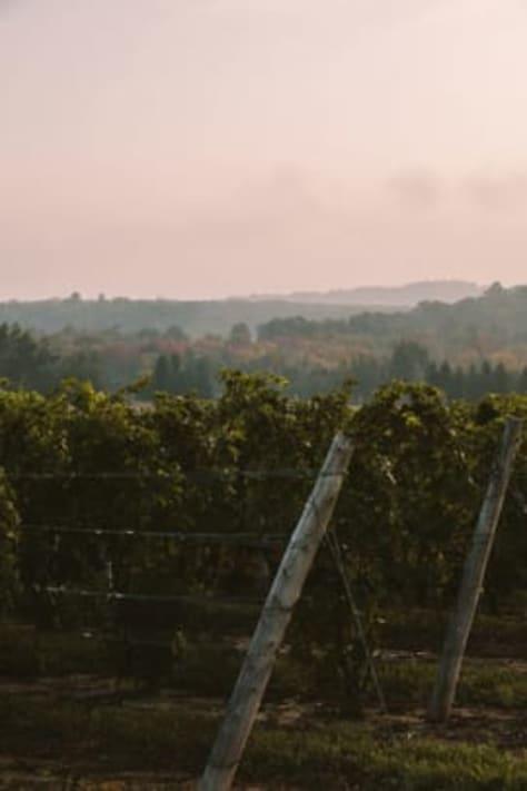 Aurora Cellars Winery